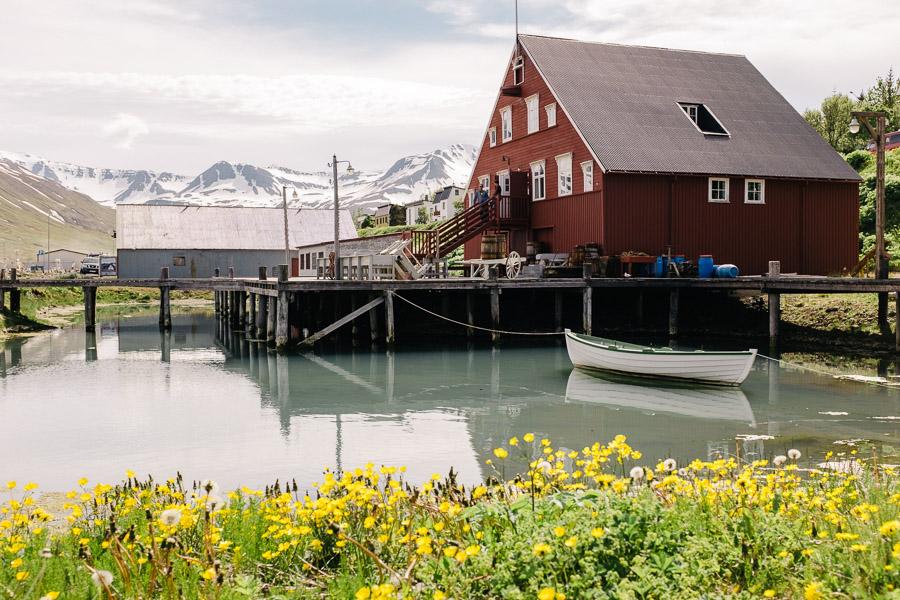 iceland_islande_kristapshercs-164