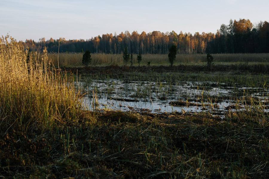 saulriets kaņiera ezers