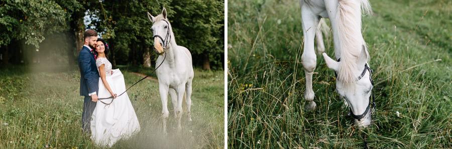 kāzas zirgs