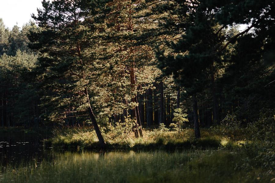 pīļu ezers